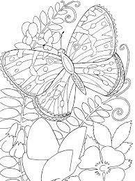 Butterfly Coloring Pages Printable Flower And Free Flowers