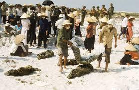 Image result for Hinh Mậu Thân Cong San Tàn Sat 1968