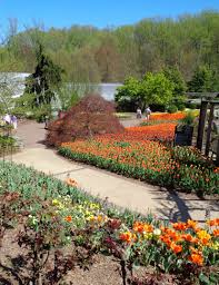 at the brookside gardens on april 16 2019 1800 glenallan avenue wheaton md 20902 natalya b parris s nbp photo