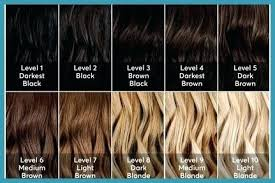 Hair Dye Colors Chart At Home Blonde Hair Dye 757goat Org