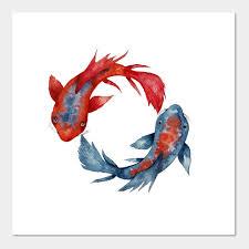 yin yang koi fish japanese koi yin