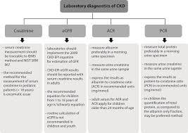 Creatinine Chart By Age Bm Biochem Med Biochemia Medica Biochem Med 1330