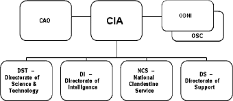 Cia Organizational Chart Managing Non Technical Projects Central Intelligence Agency