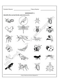 Free Printable Worksheets For Nursery Kindergarten Senior Kg Junior ...