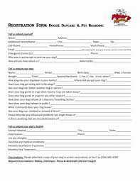 Dog Walker Resume Dog Walker Resume Proforma Invoice Letter Blank Template Sales 19