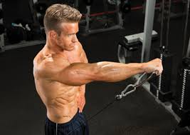 10 Best Muscle Building Shoulder Exercises Muscle