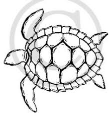 Small Picture turtle outlinejpg drawing Pinterest Turtle Easy drawings