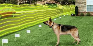 invisible fence for small dogs. Invisible Pet Fence Myths Of Dog Fences For Small Dogs