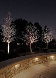 mckay landscape lighting. traditional patio by mckay landscape lighting notice the downlighting in retaining wall love uplit trees mckay