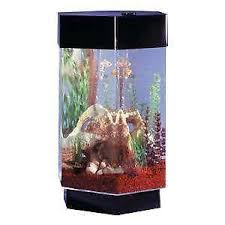 Fish Tank Accessories And Decorations Fish Tank Supplies Large Saltwater Decorations eBay 22
