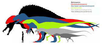 carcharodontosaurus size carcharodontosaurus google search dinosaurs pinterest google