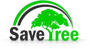 Save Tree PNG Transparent Images | PNG All