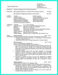 computer programmer resume samples 2695 best resume sample template and format images on pinterest