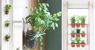 how to make an indoor herb garden. Contemporary Herb With How To Make An Indoor Herb Garden