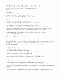 Resume Builder Canada Beauteous Print Out Resume Simple Resume Examples For Jobs