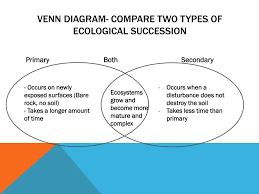 Primary Succession And Secondary Succession Venn Diagram Ppt 4 3 Succession Powerpoint Presentation Id 5360251
