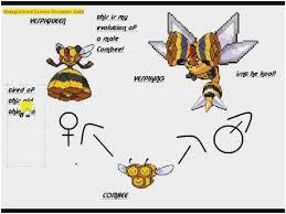 76 Meticulous Pokemon Evoltion Chart