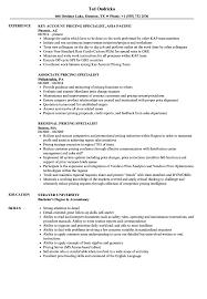 Turnaround Specialist Sample Resume Pricing Specialist Resume Samples Velvet Jobs 18