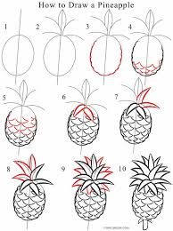 How To Draw A Pineapple Step By  Cool2bKids