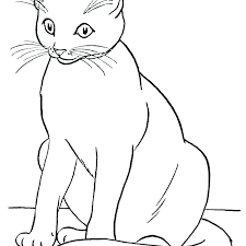 Warrior Cat Coloring Pages Cats Coloring Page Kitty Cat Coloring