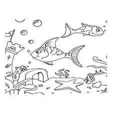 This under the sea themed printable set includes a mermaid, dolphin, turtle, fish, crab, octopus, whale and seahorse. 35 Best Free Printable Ocean Coloring Pages Online