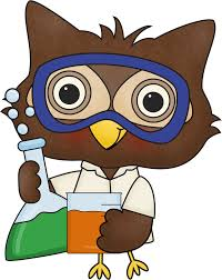 Image result for science owl