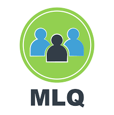 Multifactor Leadership Questionnaire Mlq Tests Training Mind