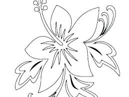 Printable Flower Coloring Pages 488websitedesigncom