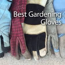 best gardening gloves. Best Gardening Gloves: Guide \u0026 Recommendations - Products Review Gloves
