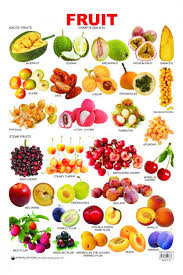 Educational Charts Series Fruit Chart 6