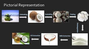 Coconut Oil Production Flow Chart Virgin Coconut Oil Processing Line Crown Machinery