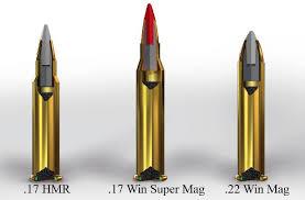 New 17 Winchester Super Magnum Rimfire