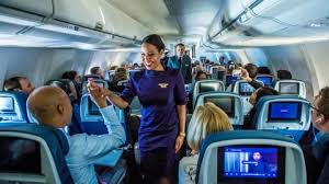 the life of a flight attendant the