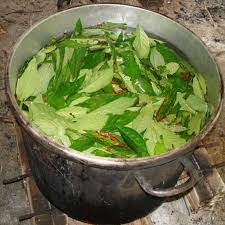Ayahuasca Can Help You Communicate with ...