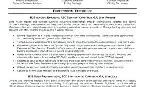 B2b Sales Resumes B2b Sales Cv Template Resume Resumes Orlandomoving Co