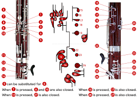 Bassoon Trill Chart How To Play The Bassoon Bassoon Fingering Chart Musical