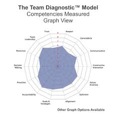 team coaching international workplace team mediation conflict the team diagnostic is a unique approach because it regards the team as a dynamic system a team is more than the sum of its parts a team is a living