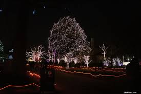 Toledo Lights Before Christmas Coupons Toledo Zoo Lights Revisited Inacents Com