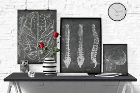 Doctor Office Design Fascinating Anatomical Brain Printable Doctor Office Art Vintage Medical Etsy