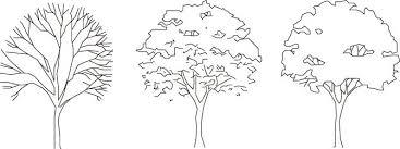 植物樹木植栽cadデータ フリーダウンロード 手書き 木イラスト