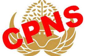 Bingung tentang hasil skd cpns 2018 yang menggunakan sistem ranking? Papua Dan Papua Barat Akan Umumkan Hasil Tes Cpns 2018 Bersamaan Suara Papua