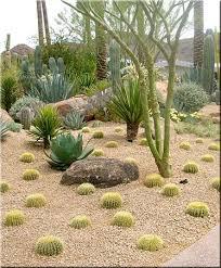 desert garden ideas.  Desert Desert Landscape Ideas  Desert Landscaping  Landscape In Arizona  Design  And Garden Ideas D