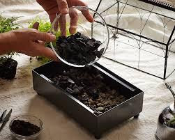 terrarium gardening 101 7 l gardenista