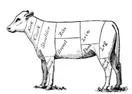Veal Meat Chart The Project Gutenberg Ebook Of Public School Domestic