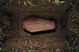 Image result for coffin