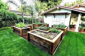deck vegetable garden vegetables