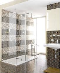 Bathroom, : Classic Bathroom Design With Glass Shower Room ...