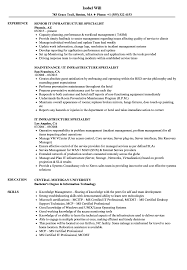 Infrastructure Specialist Sample Resume IT Infrastructure Specialist Resume Samples Velvet Jobs 1