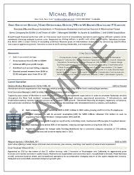Executive Resume Sample Chief Executive Officer Executive Resume Amazing Private Equity Resume