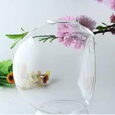 Transparent Hanging Flower Vase